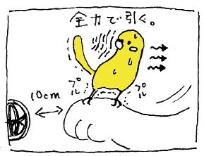 koma-bibi2.jpg