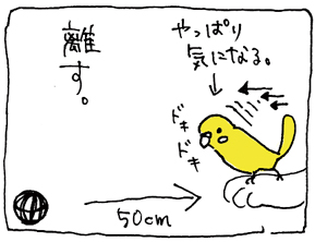 koma-bibi5.jpg