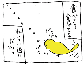 koma-esa23.jpg