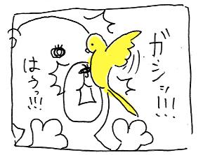 koma-hana5.jpg