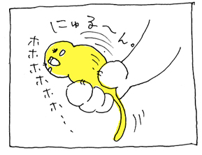 koma-pika3.jpg
