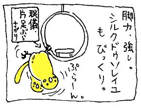 koma-silk4.jpg