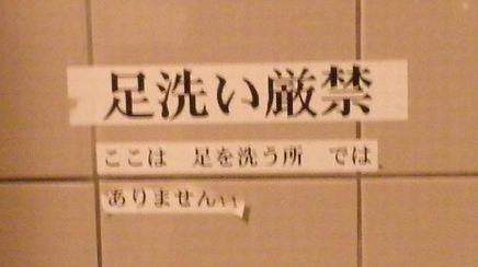 P1080336.jpg