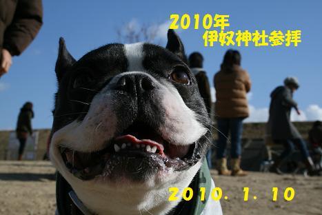 2010011005.jpg