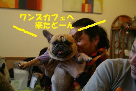 2010011047.jpg