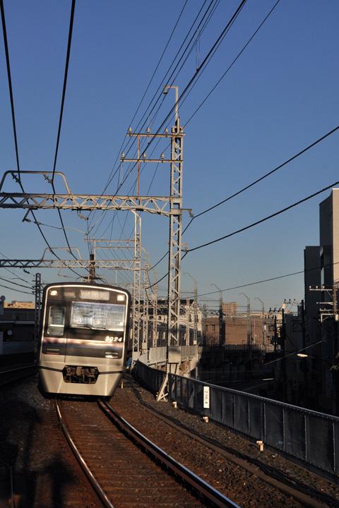 DSC_6846.jpg