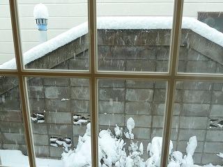 初雪2013の2