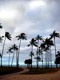 hawii07-03.jpg