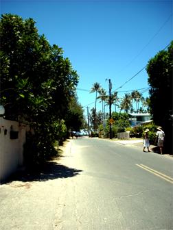 hawii08-02.jpg