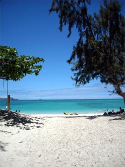 hawii08-03.jpg