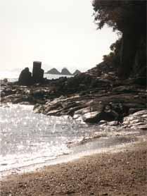 カブトガニ博物館と寄島2
