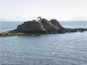 カブトガニ博物館と寄島3