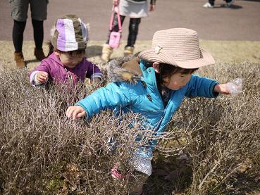 2011 03 27 服部緑地公園 tibi03