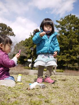 2011 03 27 服部緑地公園 tibi05