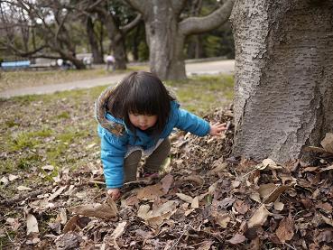 2011 03 27 服部緑地公園 tibi06