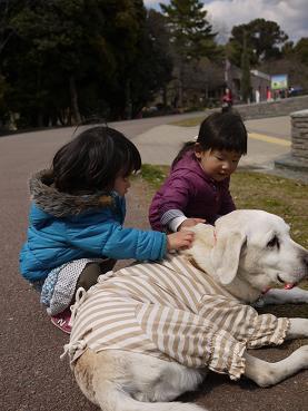 2011 03 27 服部緑地公園 tibi07