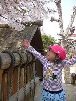 2011 04 11 長池幼稚園とおにぎり tibi02