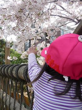 2011 04 11 長池幼稚園とおにぎり tibi01