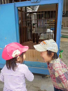 2011 04 11 長池幼稚園とおにぎり tibi03