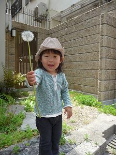 2011 05 06 結婚記念日 tibi01