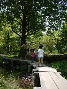 2011 05 08 鶴見緑地公園3 tibi03