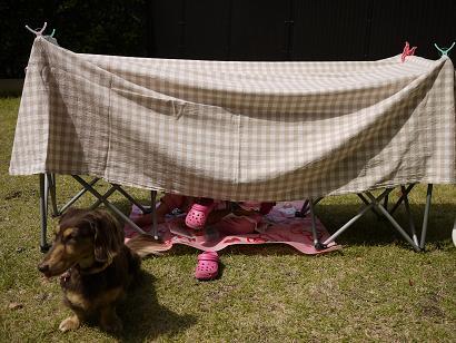2011 05 25 テントごっこ tibi01