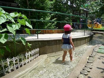 2011 06 23 幼稚園で川あそび tibi01