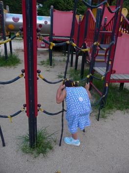 2011 07 25 夕方の公園 tibi01
