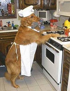dog_chef.jpg