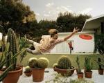 frisbee-cactus-hazard.jpg