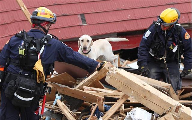rescue0315-1G20110315TTT0700356G300000.jpg