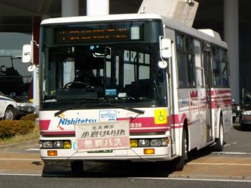 RSCN7437.png