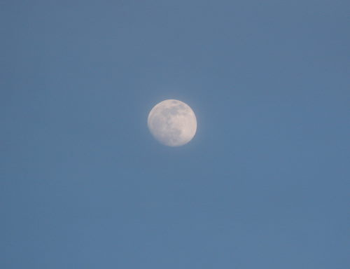 14日の月