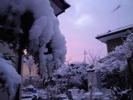 雪22の1