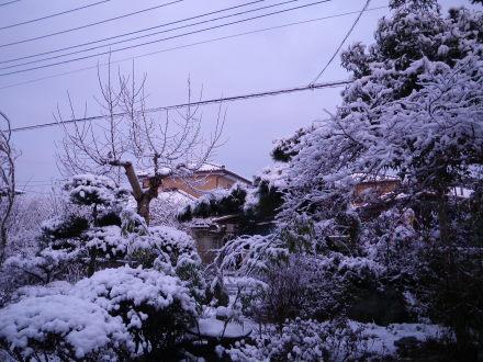 雪22の2