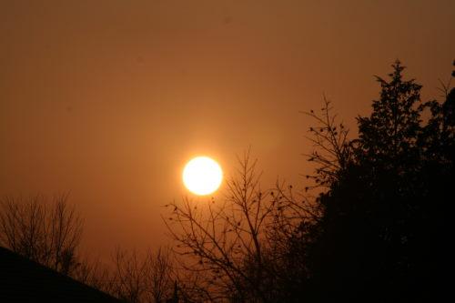 夕陽222