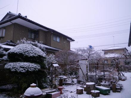 雪降り218