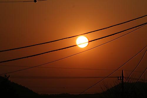 夕陽223