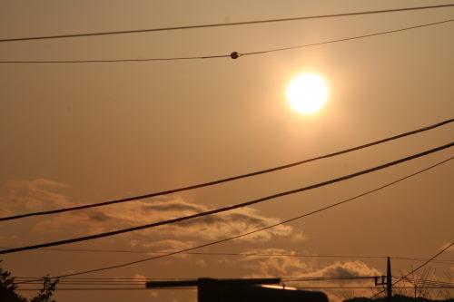 夕陽228