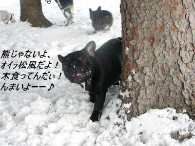 2月13日松風2