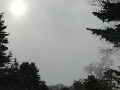 3月4日空