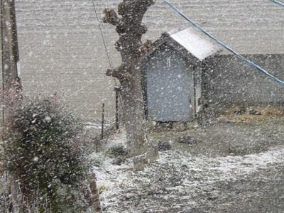 雪やこんこ2