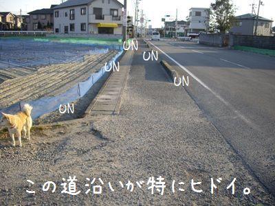 UN拾い5
