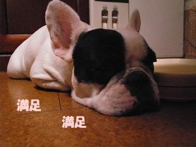 お好み焼きs1