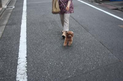 IMG_9014_convert_20110920101903.jpg