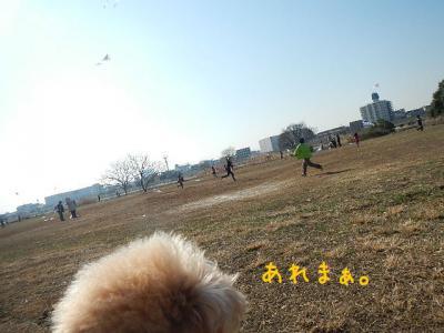 2_20130201150248.jpg