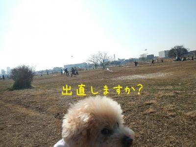 3_20130201150247.jpg