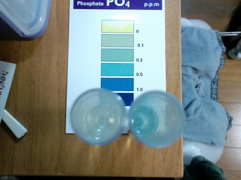 水質検査091220_01