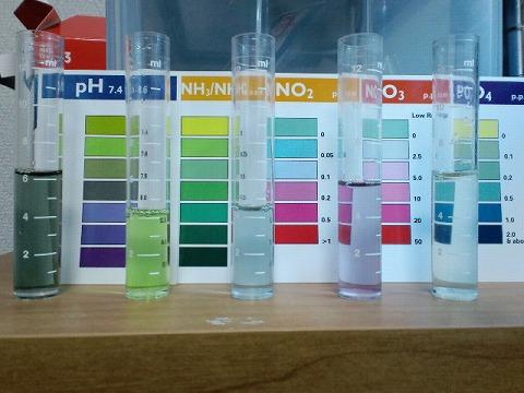 水質検査100103