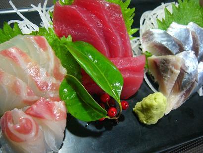 生マイワシ鯛1 (1)